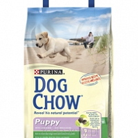 Purina Dog Chow Puppy Lamb 14kg + GRATIS do wyboru